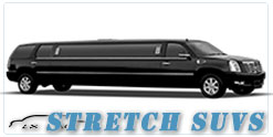 Wedding limousine in New Orleans, LA