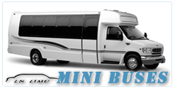 Mini Bus rental in New Orleans, LA